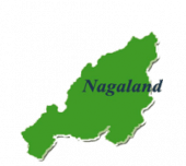 Nagaland NBSE Board